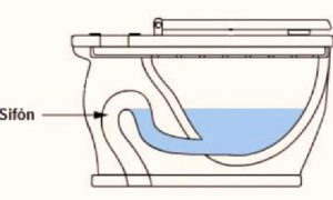 blog-img-calidad-en-los-baños-02
